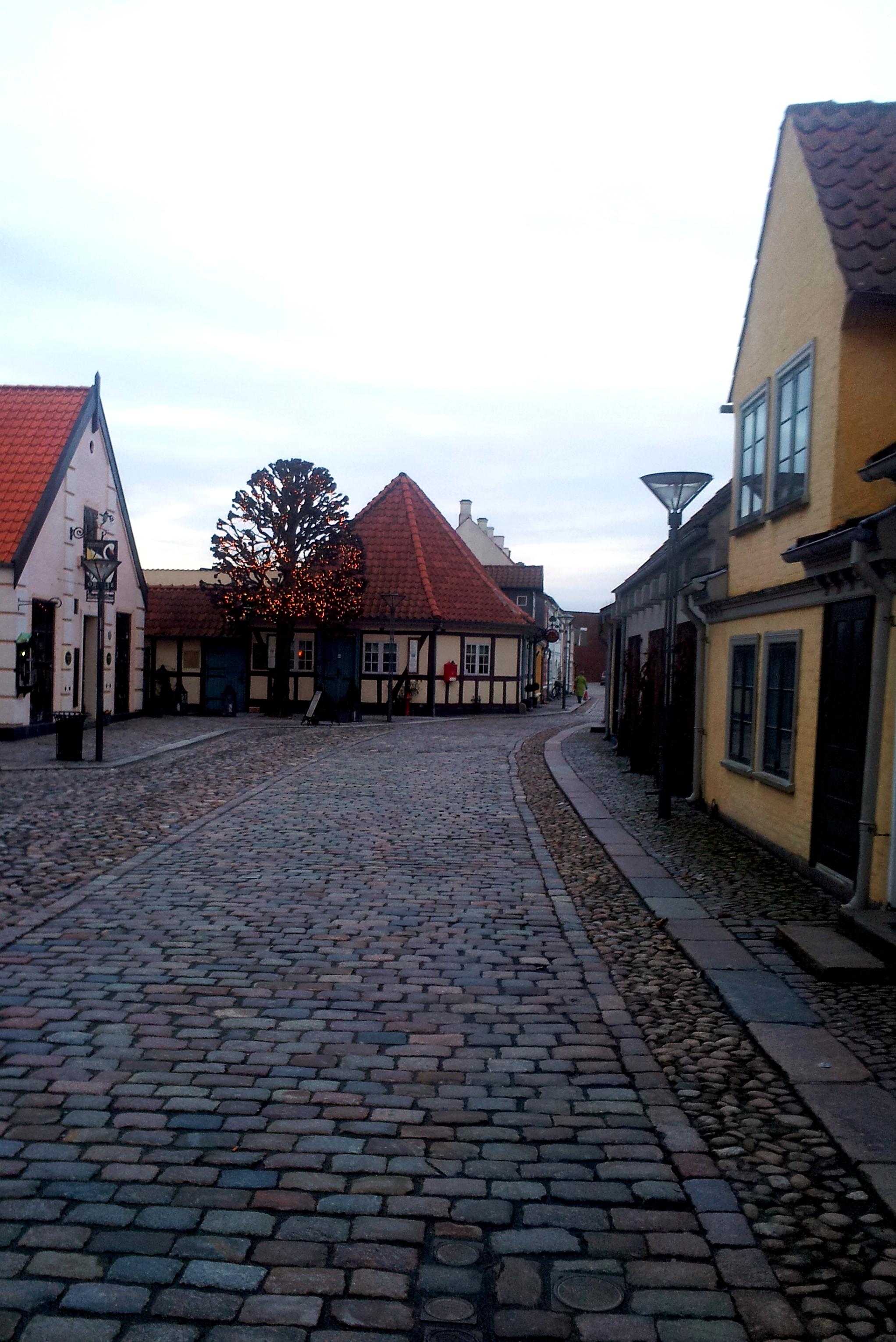 Odense Hans Christian Andersen Home